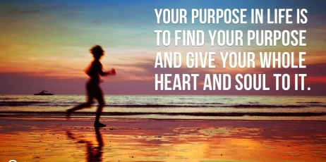 Your-purpose-in-life-is-to-find-your-purpose-and-give-your-whole-heart-and-soul-to-it_